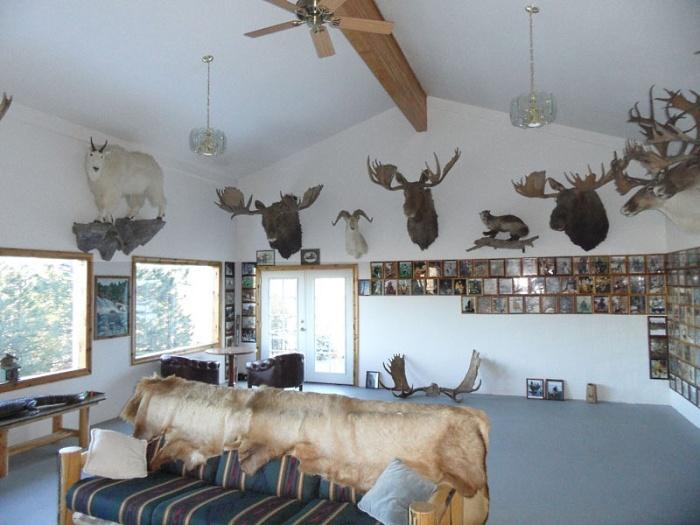 Idaho Lodge Trophy Room
