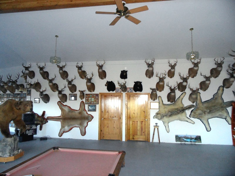 Larry jarrett s idaho hunting lodge new whitetail for Big game room