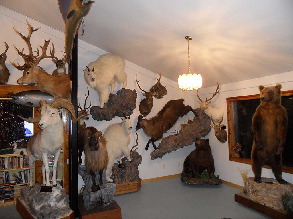 Lazy J Ranch Trophy Room